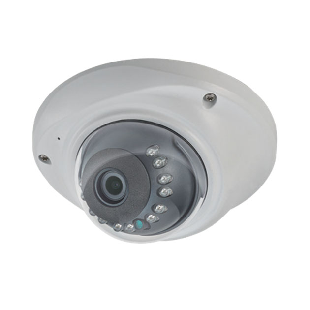 2M Mini Dome IP Camera 1